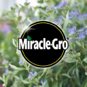 Miracle Gro